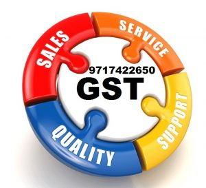Tally GST Support Ghaziabad